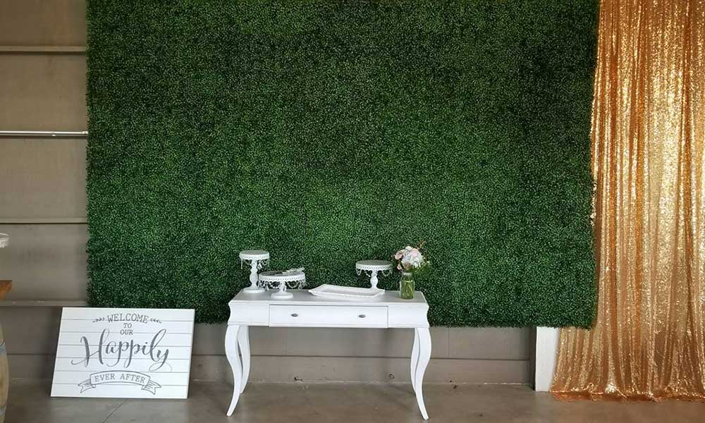 Boxwood Backdrop (1)